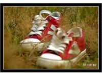 Bài Thơ Đôi Giày